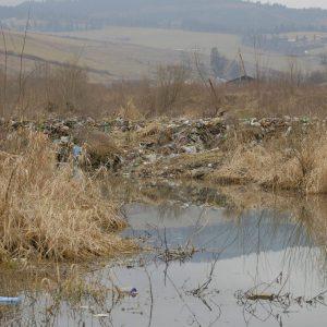Bobria hrádza (Castor fiber) na potoku Lomnička. Foto: M. Petrilak
