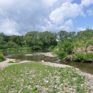 Ústie potoka Ľubotínka do rieky Poprad. Foto: V. Kĺčová Kunštárová