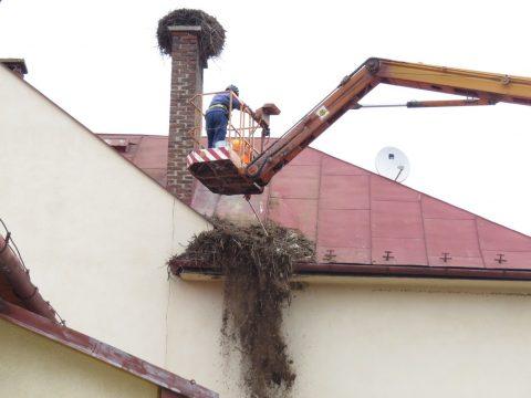 Odľahčenie hniezda bociana bieleho na materskej škole v obci Nová Ľubovňa. Foto: K. Kisková