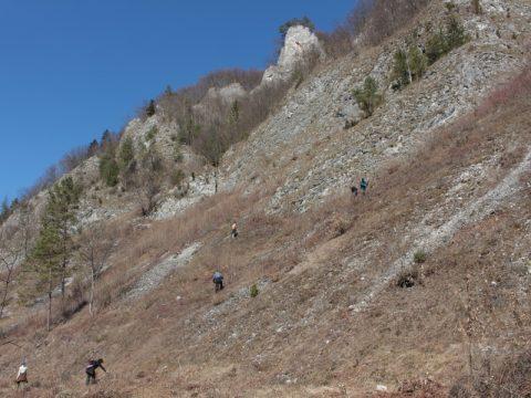 Skalné sute v prielome Lesnického potoka. Foto: V. Kĺč